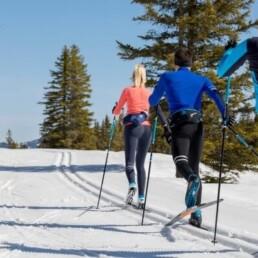 běžky na šumavě, rekreace, sport, běžkaření, pobyt na horách